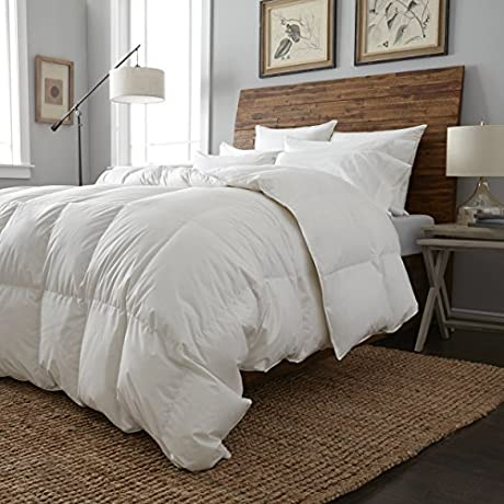European Heritage Cologne Tencel Hypoallergenic Hungarian White Goose Down Summer Weight Comforter King