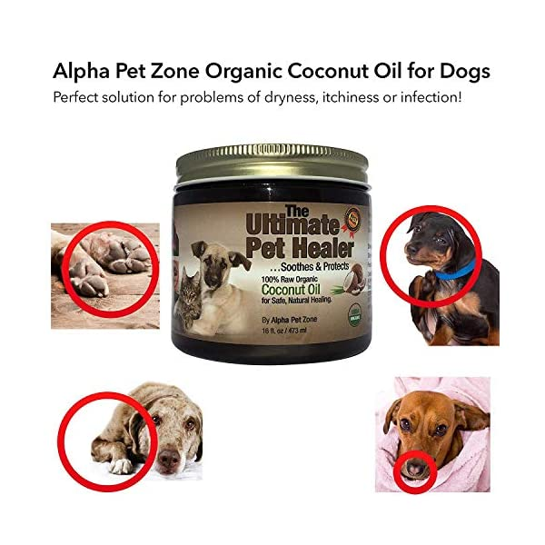 (470ml) – Alpha Pet Zone Coconut Oil for Dogs, Treatment for Itchy Skin, Dry Elbows, Paws and Nose Click on image for further info. 2