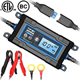 TOPAC 2/4A 6/12 Volt Automatic Car Battery Charger for Automotive, Motorcycle, Boat