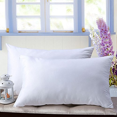 unite down White Down Feather A Pair of Pillows, Pack 2, 100% Organic Cotton Cover 233TC (51x66cm(20x26inch), White)