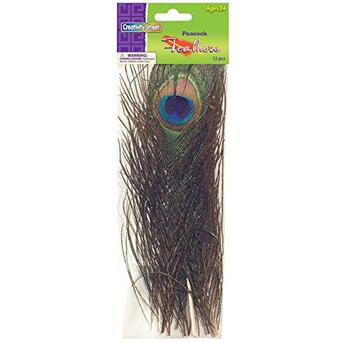 Chenille Kraft CK-4515 Peacock Feathers, 4