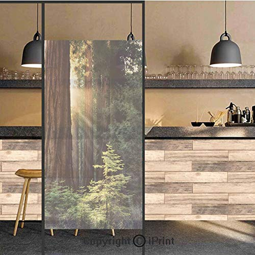 (3D Decorative Privacy Window Films,Morning Sunlight in Wilderness Yosemite Sierra Nevada Nature Art,No-Glue Self Static Cling Glass Film for Home Bedroom Bathroom Kitchen Office 17.5x71 Inch)
