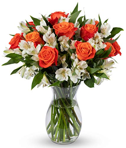 Benchmark Bouquets Dazzling Roses and Alstroemeria, With Vase (Fresh Cut Flowers)