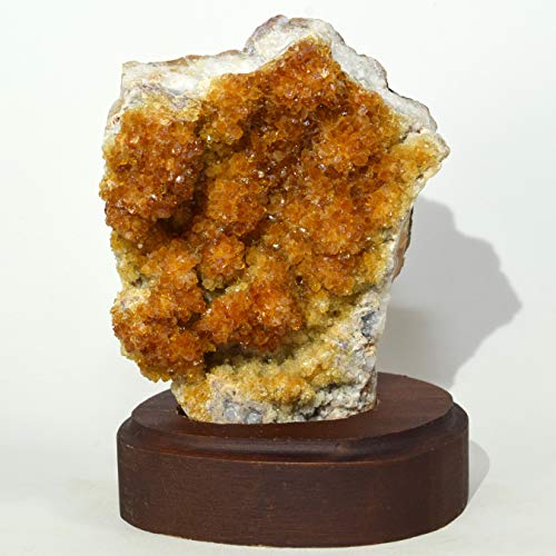 "HC Set: 4.25"" Citrine Druzy Cluster on Wood Base Natural Orange Quartz Mineral Specimen Crystal Geode Gemstone - Brazil + One Polished Clear Quartz Cabochon"