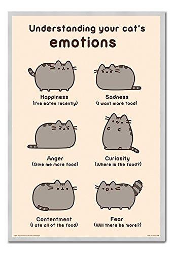 Pusheen Verständnis Ihre Katze Emotionen Poster Kork Pinnwand silber Rahmen, 96,5 x 66 cm (ca. 96,5 x 66 cm)