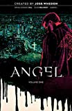 img - for Angel Vol. 1: Being Human (1) book / textbook / text book