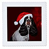 3dRose Sandy Mertens Christmas Animals - English Springer Spaniel Dog Wearing Santa Hat Red Ornament Background - 12x12 inch quilt square (qs_269523_4)