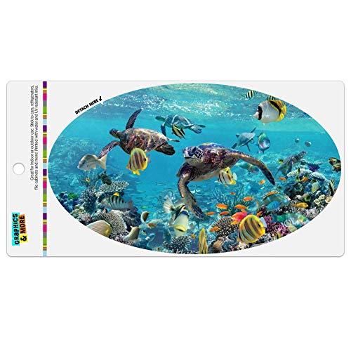 GRAPHICS & MORE Ocean Coral Reef Sea Turtles Diving Automotive Car Refrigerator Locker Vinyl Euro Oval Magnet