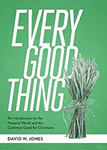 Every Good Thing: An Introduction to the Material World and the Common Good for Christians (SEBTS)