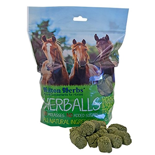 Hilton Herbs Ltd. Herballs Horse Treat Garden, Lawn, Supply, Maintenance