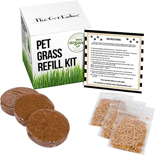 CAT Grass/PET Grass Refill KIT - 3 Pack: Refill kit for Item #B01I5XHWI6 and B01JNI9W9E: 100% Organic pet Grass kit/cat Grass kit.Natural Hairball Control and Hairball Remedy for Cats. from The Cat Ladies