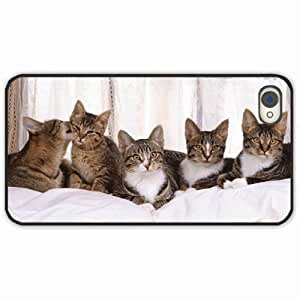 iPhone 4 4S Black Hardshell Case kittens many sitting Desin Images Protector Back Cover