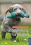 Grunderziehung für Welpen: Fichtlmeiers Hundeschule