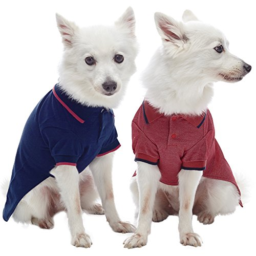 (Blueberry Pet Pack of 2 Back to Basic Cotton Blend Dog Polo Shirts in Navy and Rusty Red, Back Length 16