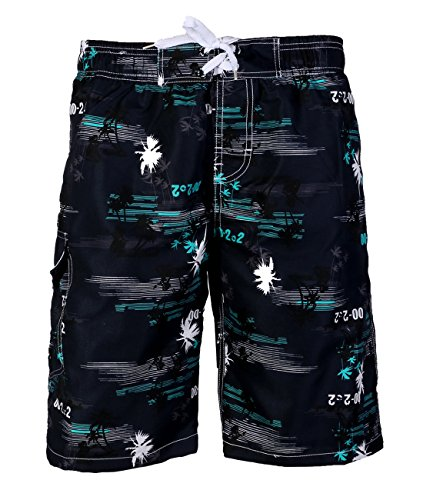 APTRO Men's Quick Dry Board Short Printed Palm Beach Swim Wear #1526 Blue M