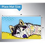 Drymate Pet Placemat, Dean Russo Designs, Dog Food Mat, Cat Food Mat, Zorb-Tech Anti Flow Technology for Surface Protection (USA Made) 6