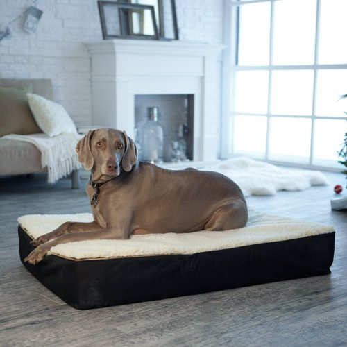 Snoozer Medium Super Orthopedic Senior Dog Bed, Green with Black Sherpa, My Pet Supplies