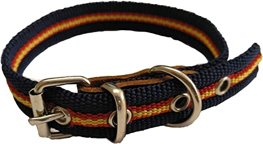 Global Collar de Perro Bandera de España Color Azul | Collar de Perro de algodón | Collar 40 cms: Amazon.es: Productos para mascotas