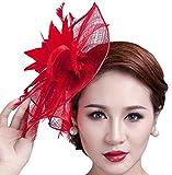 Feather Fascinator Pillbox Hat Kentucky Derby Hat Bridal Headwear for Women
