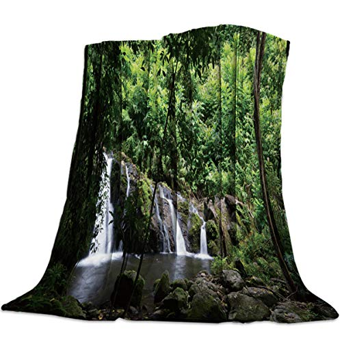 Anzona Lightweight Flannel Fleece Bed Blankets 49'' x 78'' Soft Luxury Throw Blankets Green Forest Waterfall Forest Pattern Travel Camping Blankets for Girls/Kids/Boys/Couch Childrens Waterfall Back Recliner