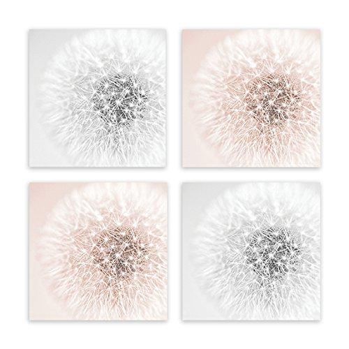 Amazon.com: Blush Pink Peach Gray Wall Art, Dandelion Wall Art ...