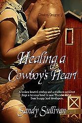 Healing a Cowboy's Heart (Cowboy Dreamin' Book 2)