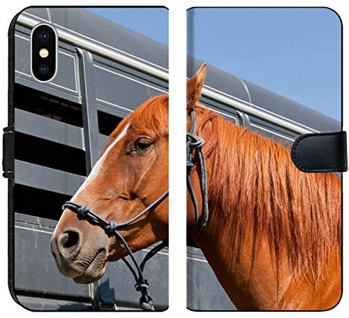 - Luxlady iPhone X Flip Fabric Wallet Case IMAGE ID: 34247959 A close up of a reddish brown horse tied with a blue rope halter to a ho