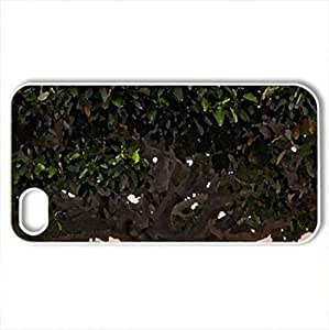 amazing tree - Case Cover for iPhone 4 and 4s (Watercolor style, White)