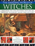 img - for Amazing World of Witches book / textbook / text book