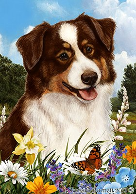 Australian Shepherd Red Tri – Best of Breed Summer Flowers Large Flags For Sale