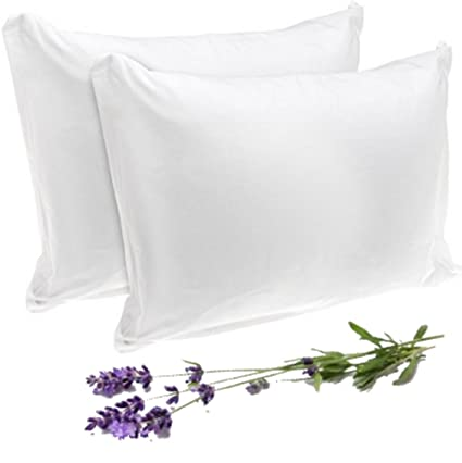 Amazon SERENDIPlicity Bed Bug Pillow Protectors Zippered Delectable Bed Bug Pillow Cover