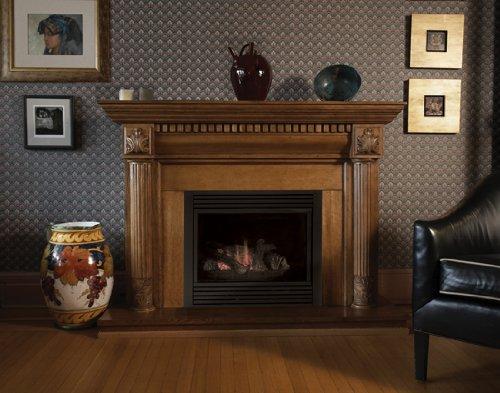 Groovy Monessen Cdvr36Nv 36 Rear Direct Vent Natural Gas Fireplace Interior Design Ideas Grebswwsoteloinfo