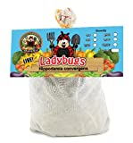 4500 Live Ladybugs - Good Bugs - Guaranteed Live Delivery!