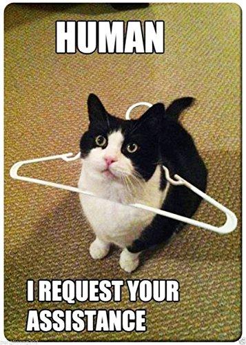 Cat human i request your assistance funny fridge magnet 3 1/2