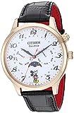 Citizen AP1053-15W