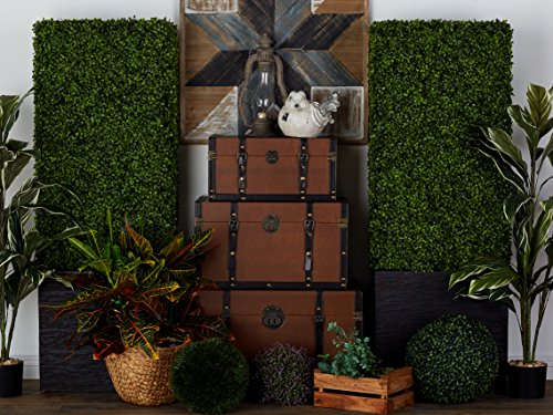 Deco 79 50861 Pe Boxwood Hedge, 22'' by 59'' by Deco 79 (Image #2)