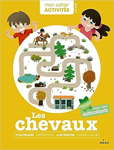Lire un PONEYS ET CHEVAUX ACTIVITES ANNEES POURQUOI pdf