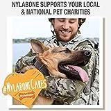 Nylabone Healthy Edibles Bacon Flavored Dog