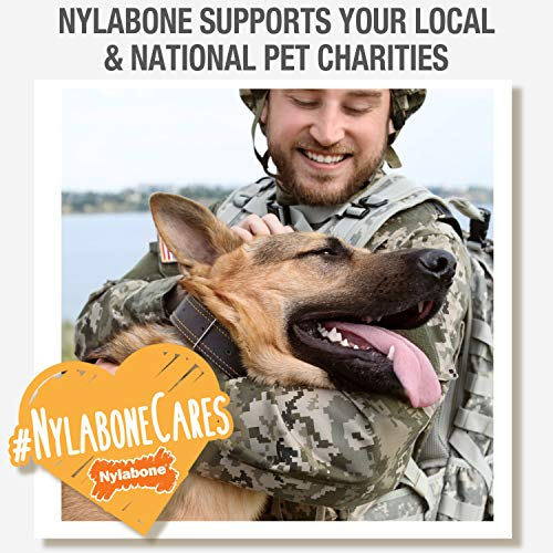Nylabone Healthy Edibles All Natural Long Lasting Chew Treats Variety Pack, Roast Beef & Chicken & Bacon Petite 3 count, Brown (491151)
