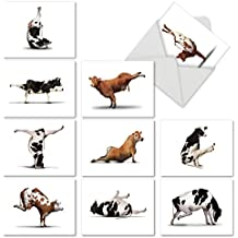 Cow Yoga Note Cards with Envelopes (10 Pack) - Humorous Animal 'Bovine Nirvana' All Occasion Blank Greeting Card - Boxed, Bulk Set of Blank Notecard Assortment - Cattle Zen (4 x 5 Inch) - M6545OCBsl