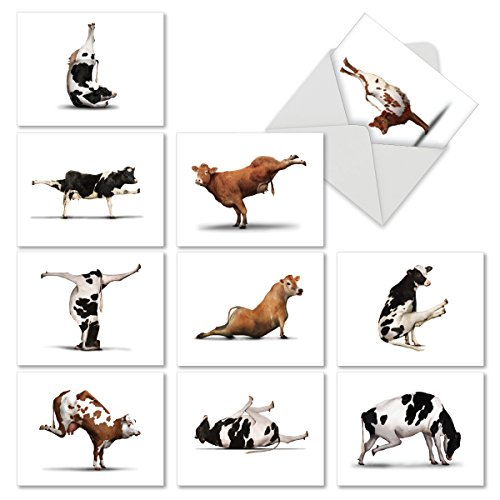 M6545OCB Bovine Nirvana: 10 Assorted Blank All-Occasion Note Cards Featuring Fun and Flexible Cows Perfecting Various Yoga Poses, w/White Envelopes.