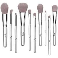 Qivange 10 In 1 Liquid Powder Blush Eyeliner Eyeshadow Brushes Synthetic Makeup Brushes Set (Silver)