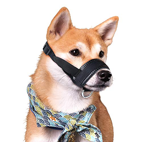 Best Dog Muzzles