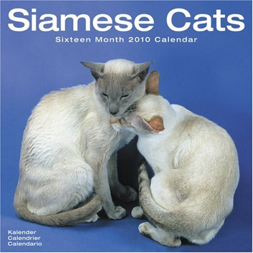 (Cats - Siamese 2010 Wall)