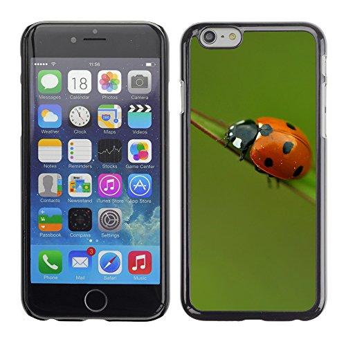 """Premio Sottile Slim Cassa Custodia Case Cover Shell // V00003531 coccinelle sur une feuille 3 // Apple iPhone 6 6S 6G 4.7"""""""
