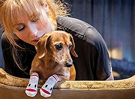 RC Pet Products Pawks Dog Socks