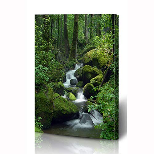 (Ahawoso Canvas Prints Wall Art 8x12 Inches Greenery Green Waterfall Cascade Falls Over Mossy Rocks Nature Creek Forest Parks Water Stream River Wooden Frame Printing Home Living Room Office Bedroom)