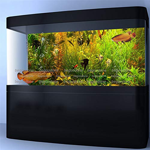 FidgetGear Aquarium Background Poster HD Aquatic Fish Tank Wall Decorations Water Plants 30 x 22/ 76 x 56cm