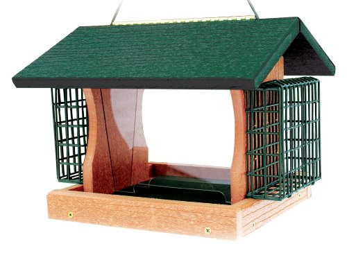Woodlink Going Green Large Premier Bird Feeder With Suet