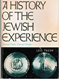 img - for A History of The Jewish Experience Eternal Faith, Eternal People A Journey Into Judaism book / textbook / text book